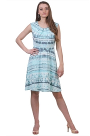 Neesha Patterned Flare Dress - Product Mini Image