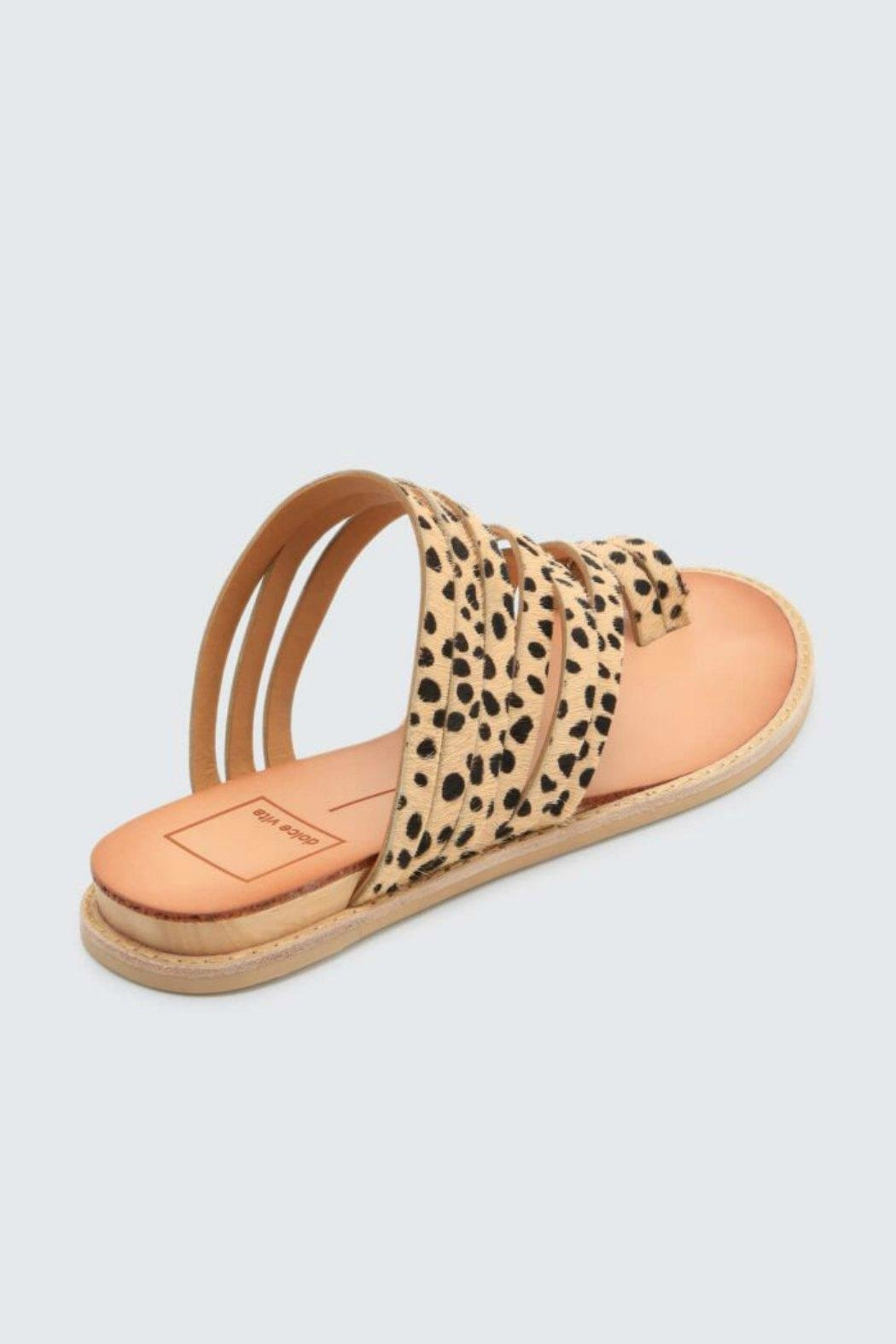 Dolce Vita Nelly Leopard Flat - Side Cropped Image