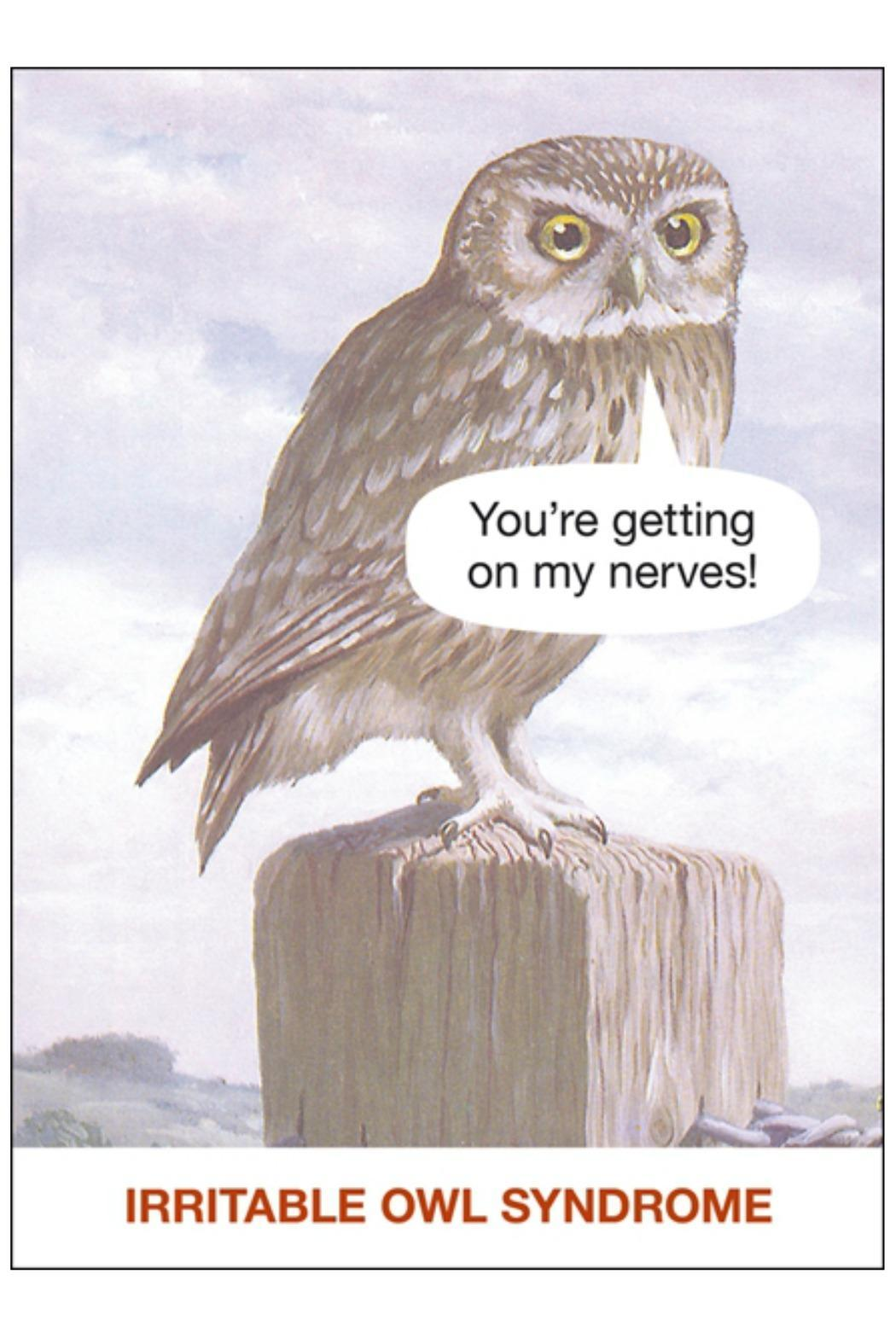 Nelson Lane Irritable Owl Syndrome Card - Main Image