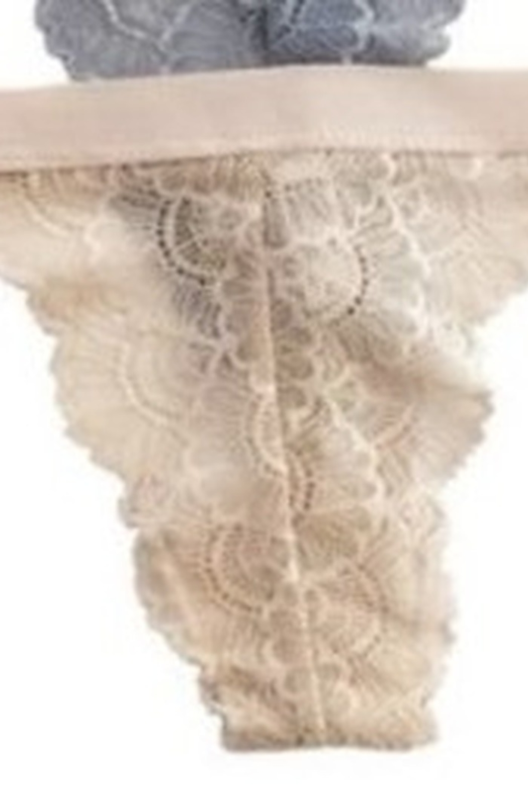 Anemone Neutral Lace Thong - Front Cropped Image