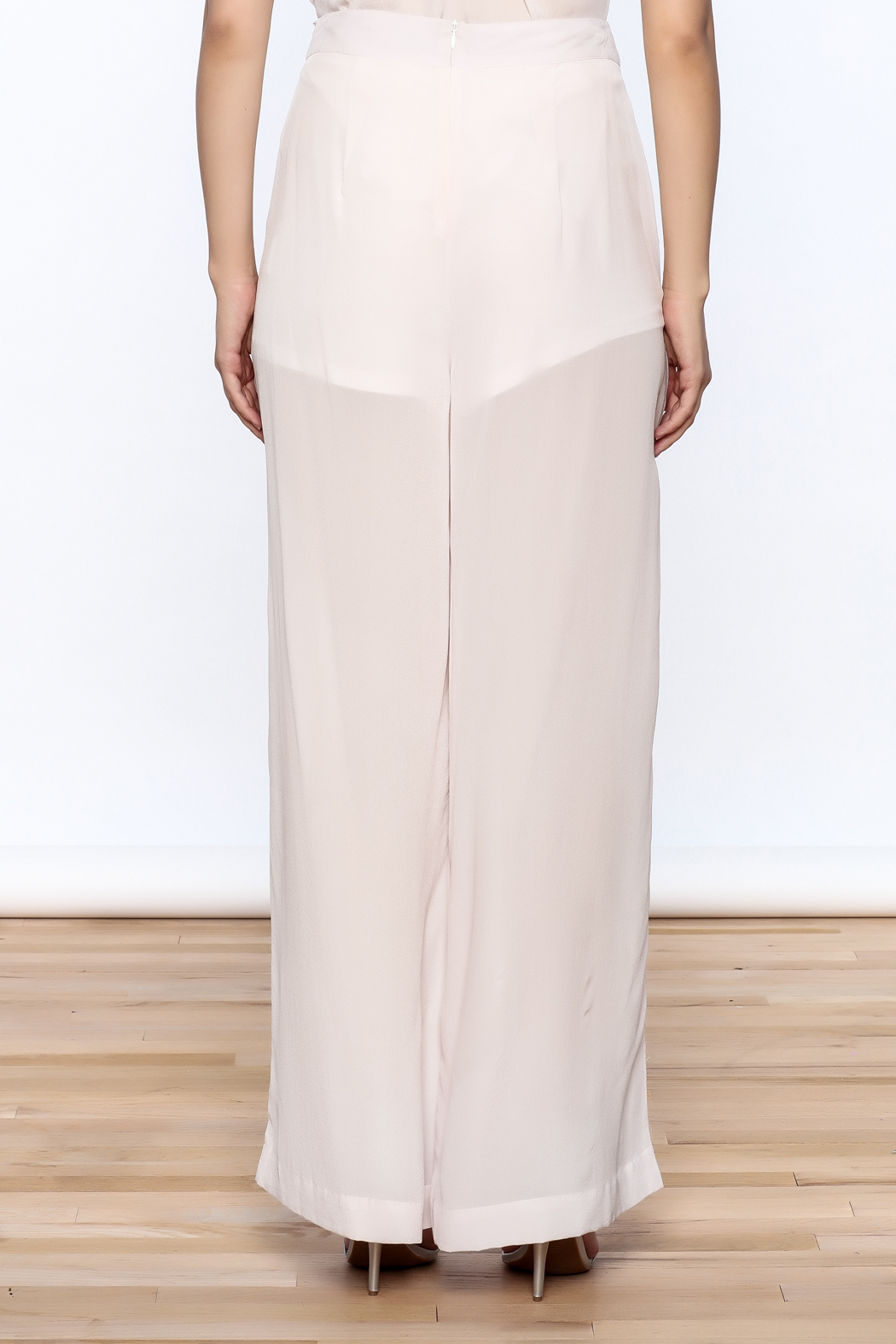 New Friends Colony Eloise Sheer Pants - Back Cropped Image