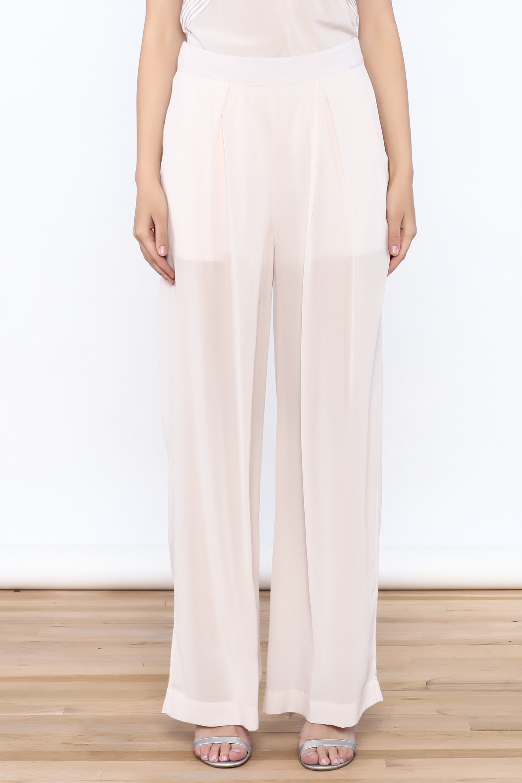 New Friends Colony Eloise Sheer Pants - Side Cropped Image