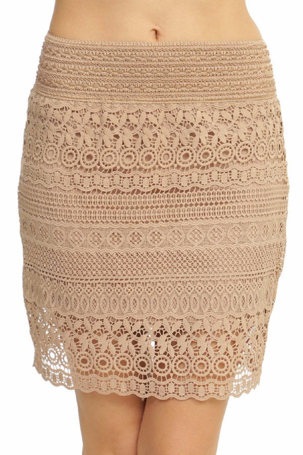 New Mix Lace Mini Skirt - Front Cropped Image