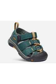 Keen Toddler's Newport H2 - Back cropped