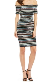 Nicole Miller Paradise Stripe Dress - Front cropped