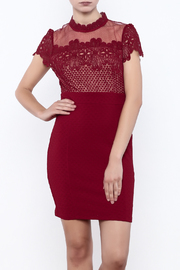 Nikibiki Lace Bodice Dress - Product Mini Image