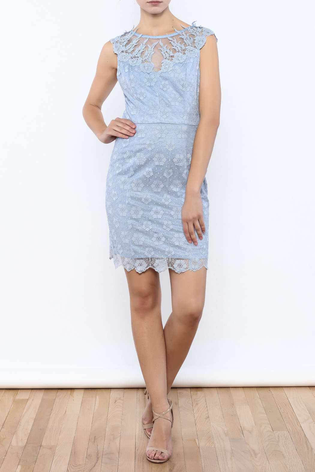 Nikibiki Lace Embroidered Dress - Front Full Image