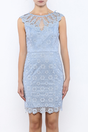Nikibiki Lace Embroidered Dress - Side cropped