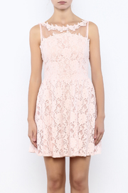 Nikibiki Lace Floral Dress - Side cropped