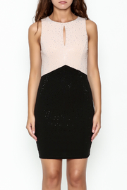 Nikibiki Studded Colorblock Dress - Front full body