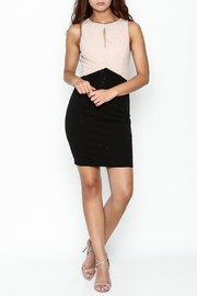 Nikibiki Studded Colorblock Dress - Side cropped