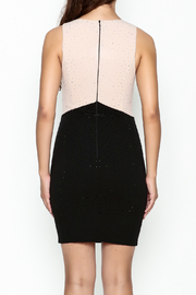Nikibiki Studded Colorblock Dress - Back cropped