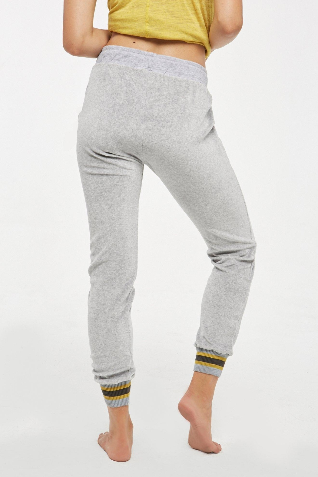 Project Social T Nixon Banded Jogger - Front Full Image