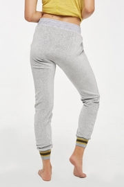 Project Social T Nixon Banded Jogger - Front full body