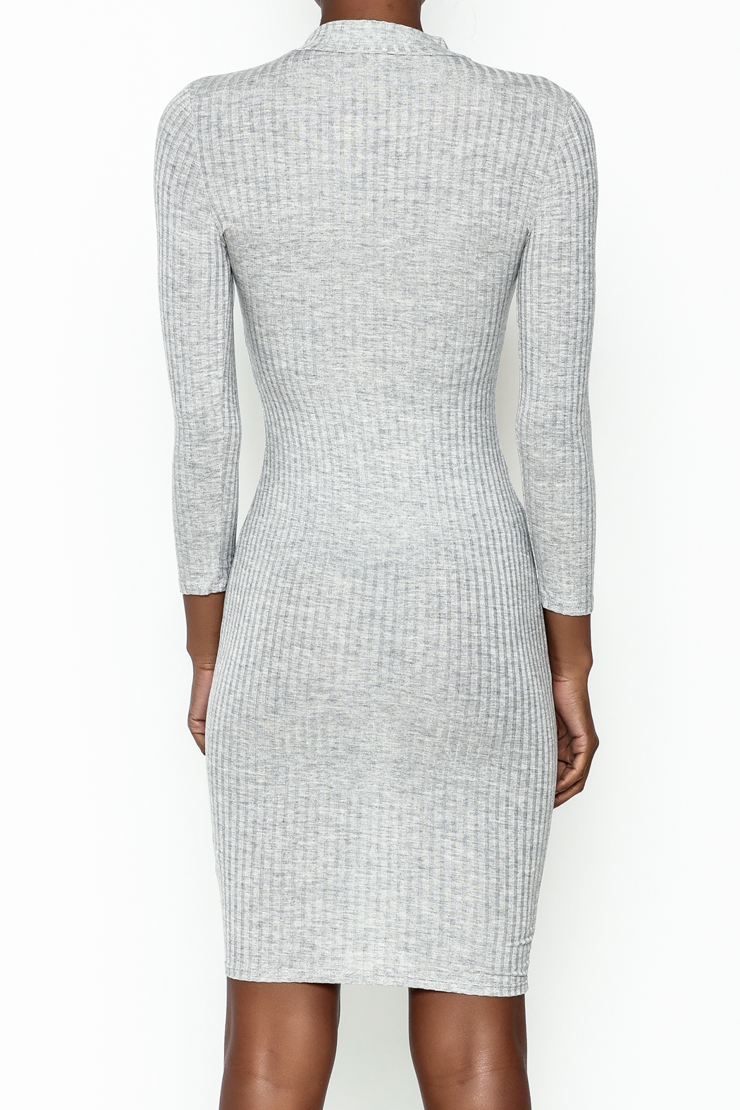 Noble U Bodycon Mock Neck Dress - Back Cropped Image