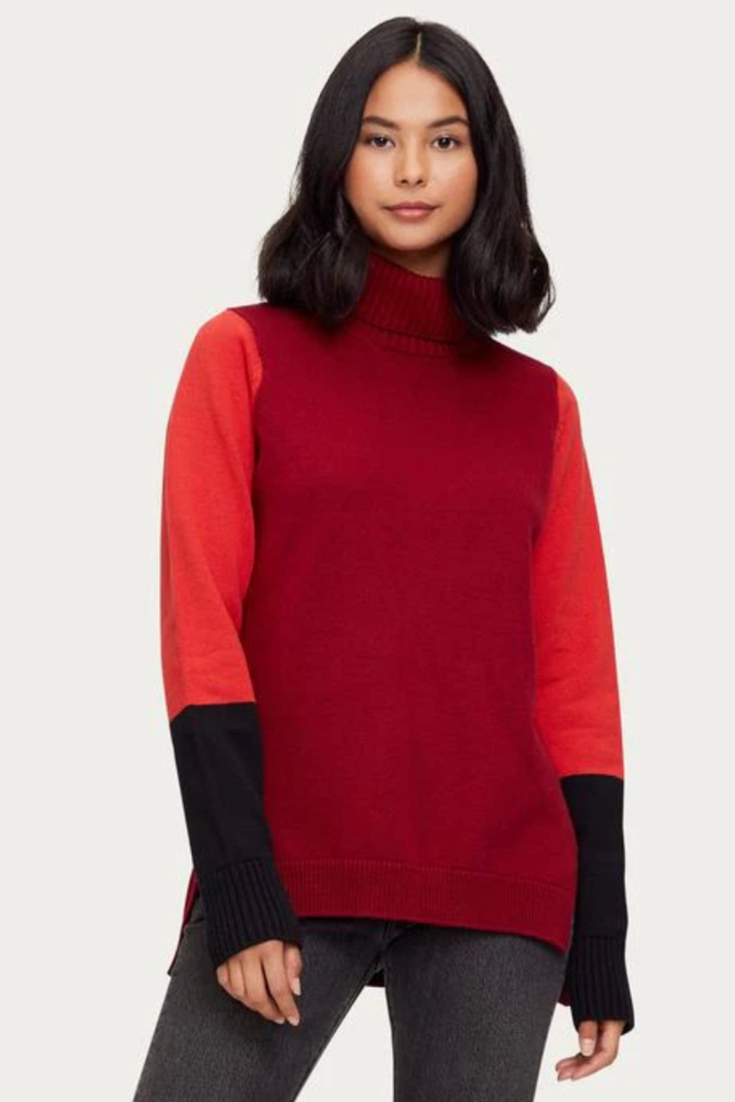 Michael Stars Noel Colorblock Turtleneck - Front Cropped Image
