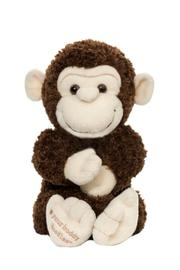 Noodle and Boo Stuffed Monkey - Product Mini Image