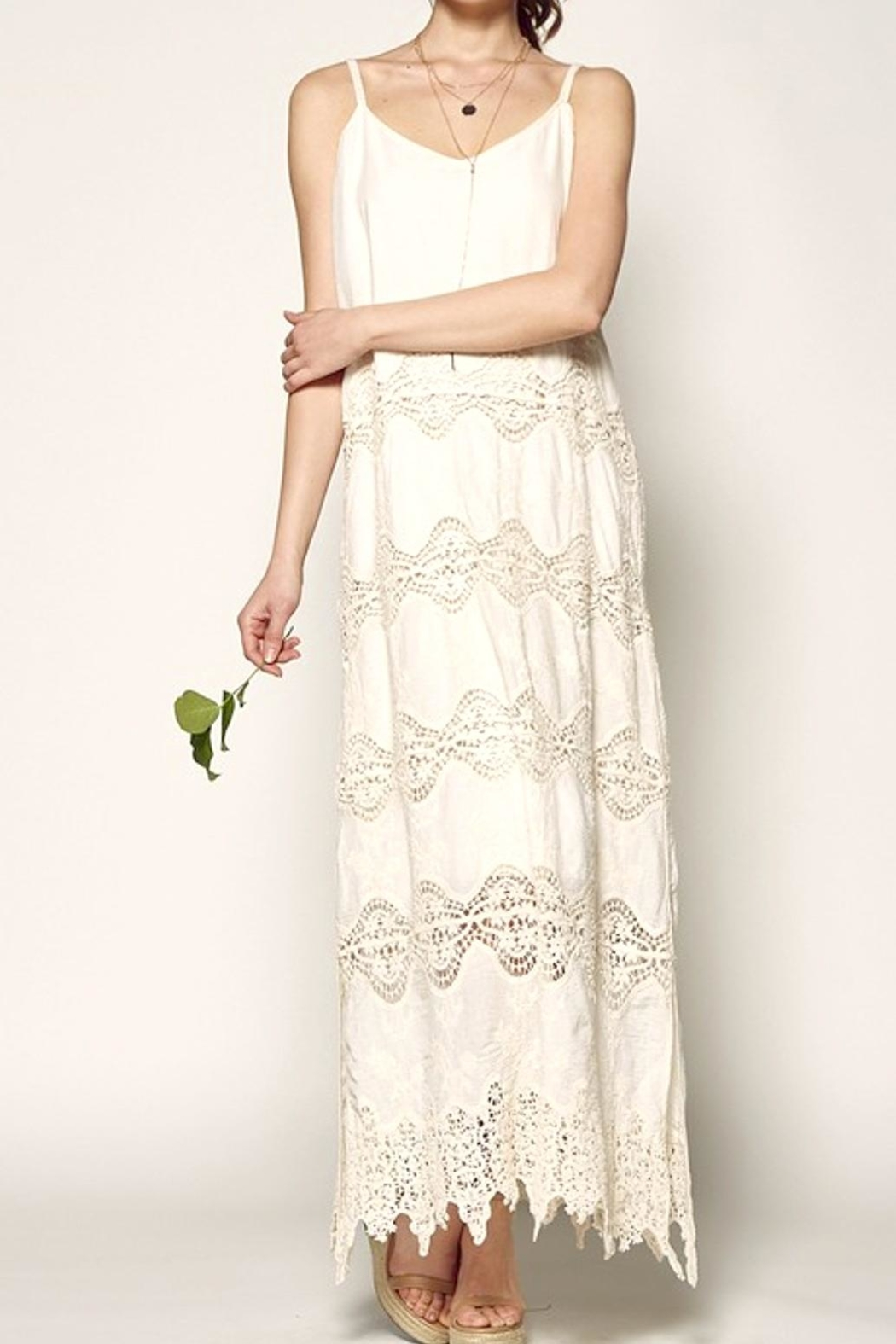 Nostalgic Threads Crochet Lace Maxi - Front Cropped Image