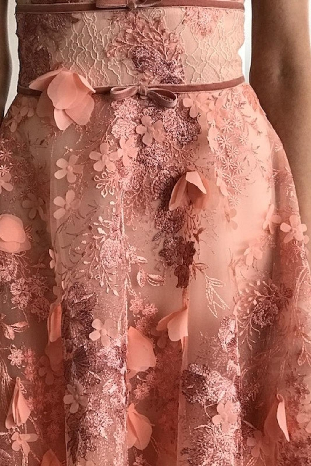Marchesa Sleeveless Embroidered Gown - Front Full Image