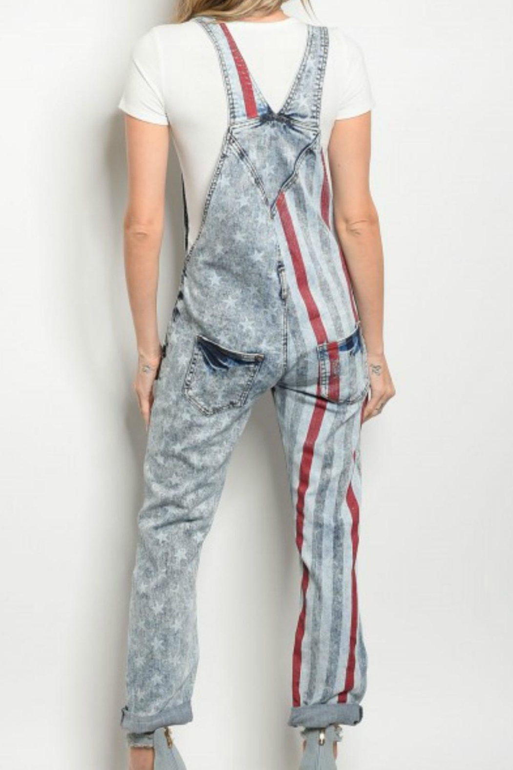 Nouvelle American Flag Overalls - Front Full Image