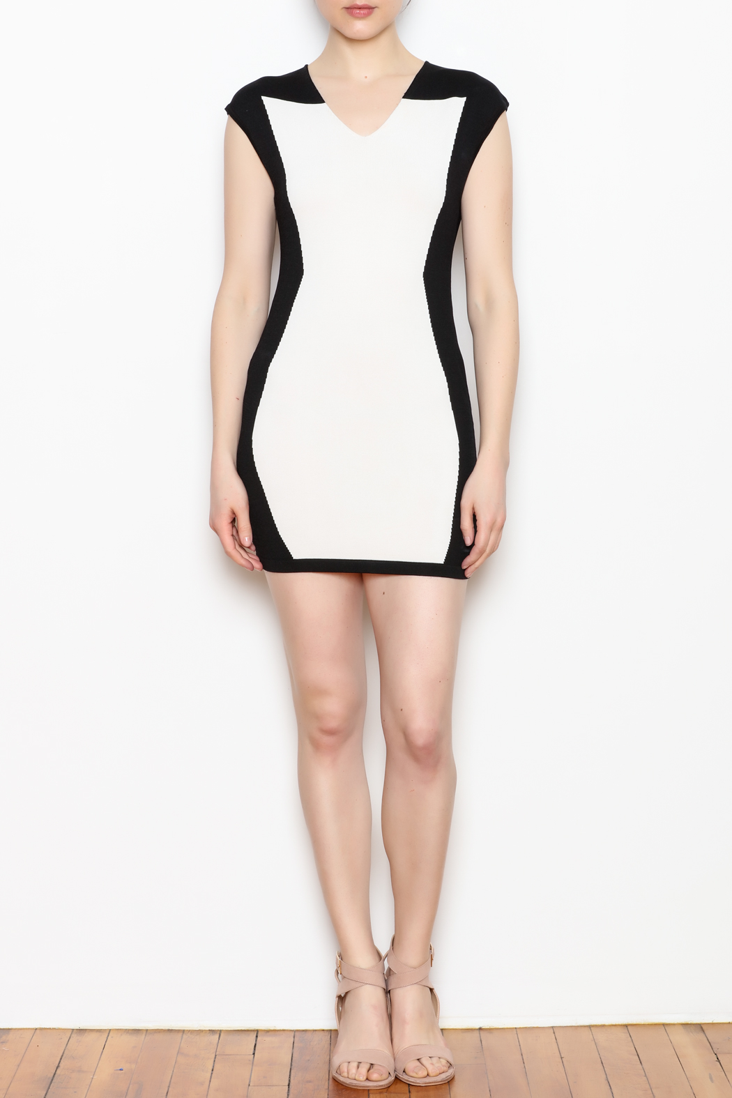 NU New York Fitted Mini Dress - Front Full Image