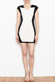 NU New York Fitted Mini Dress - Front full body