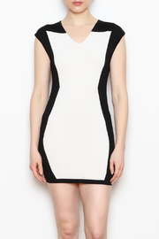 NU New York Fitted Mini Dress - Product Mini Image