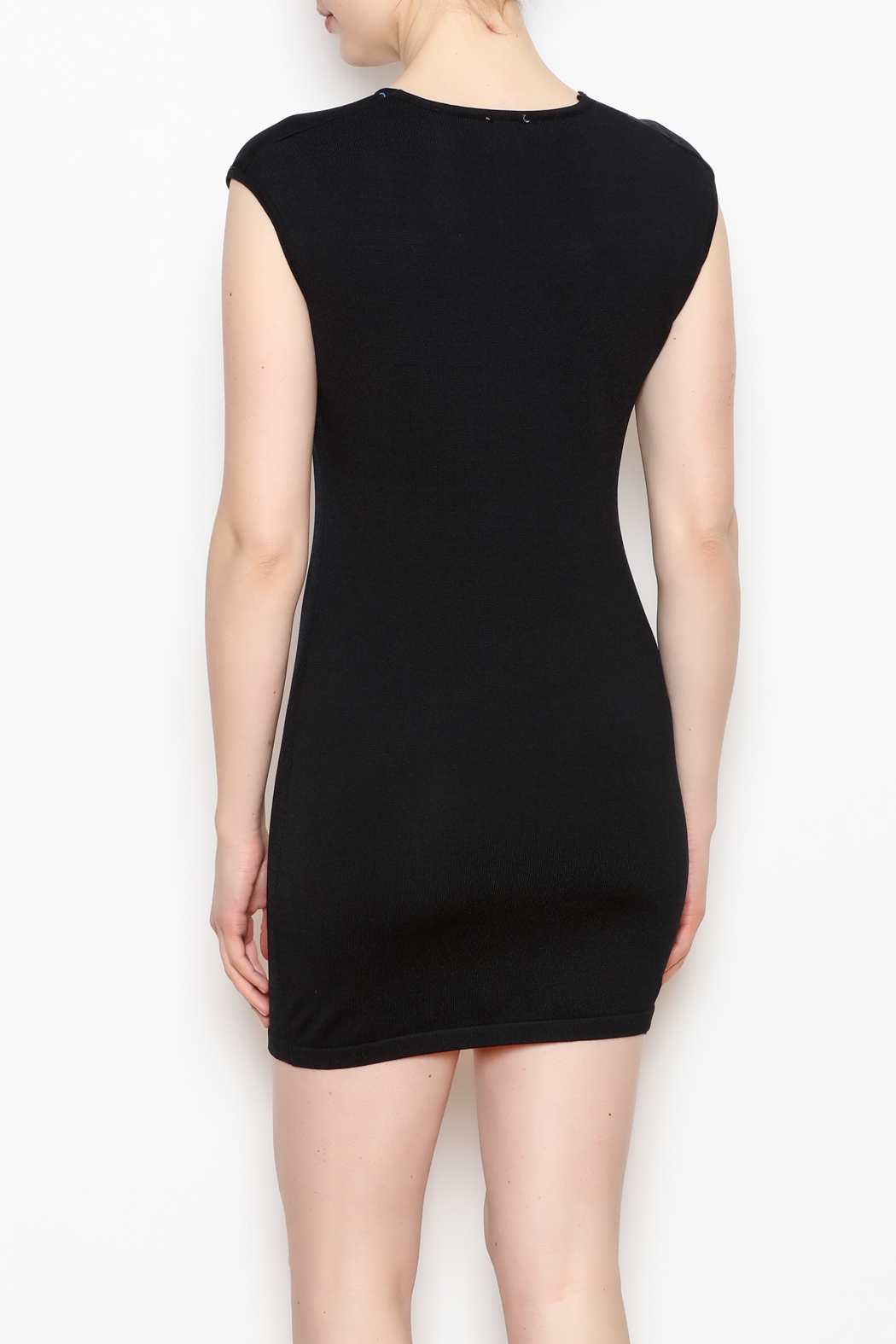 NU New York Fitted Mini Dress - Back Cropped Image
