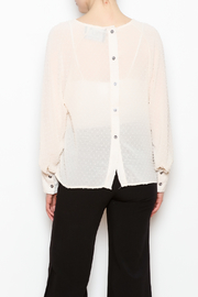 NU New York Sheer Chiffon Blouse - Back cropped