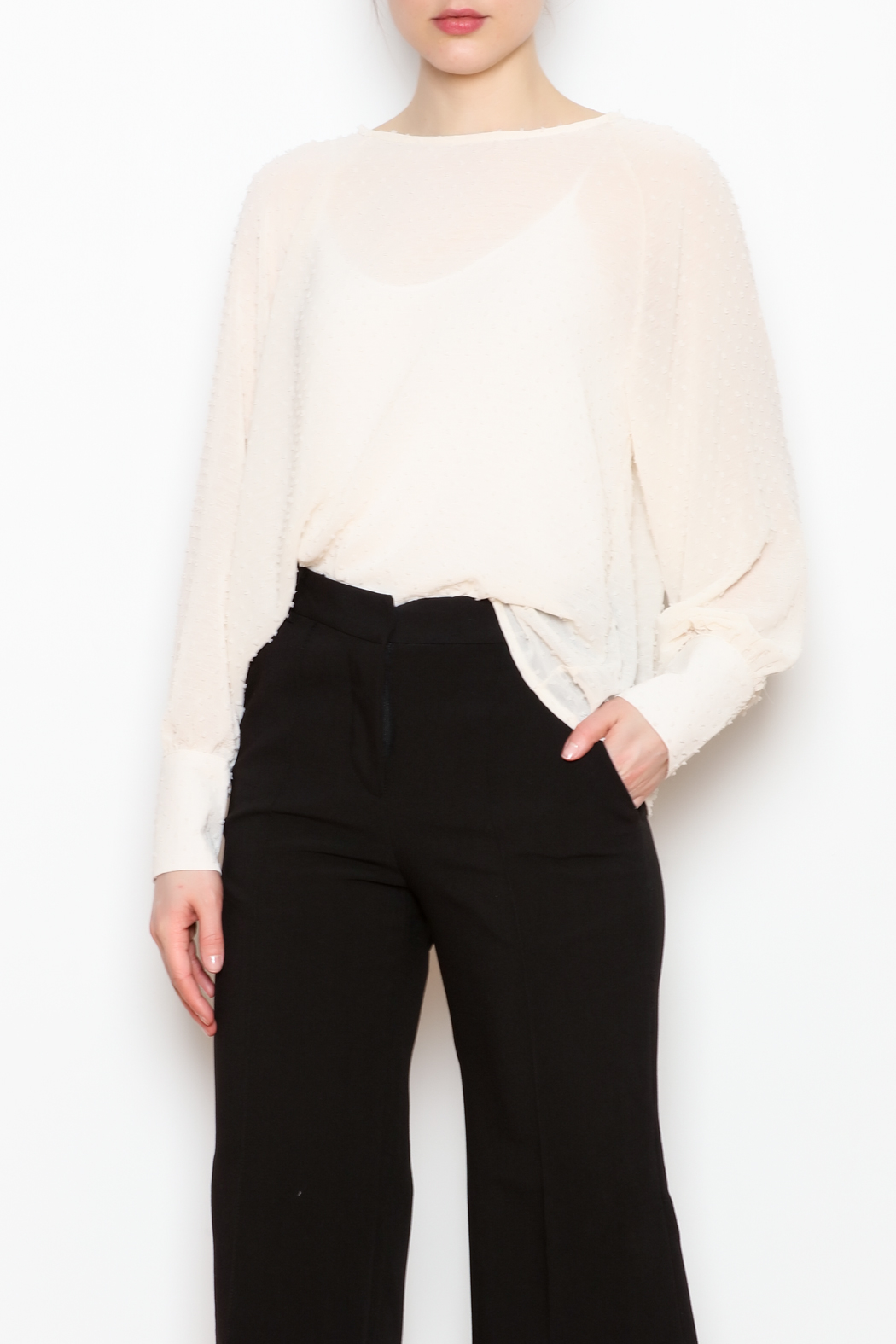 NU New York Sheer Chiffon Blouse - Front Cropped Image