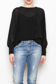 NU New York Sheer Chiffon Blouse - Product Mini Image