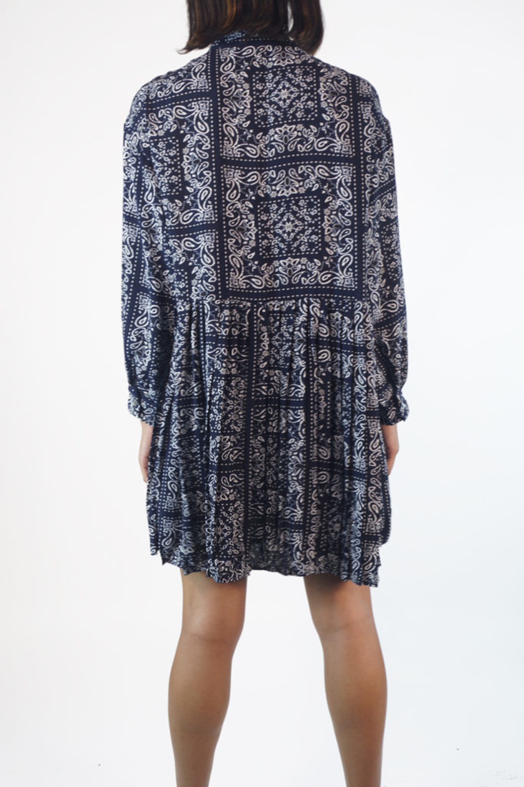 NU New York PAISLEY PLEATED DRESS - Back Cropped Image