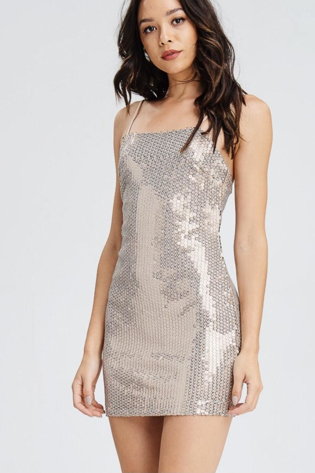 Emory Park Nude Sequin Dress - Main Image