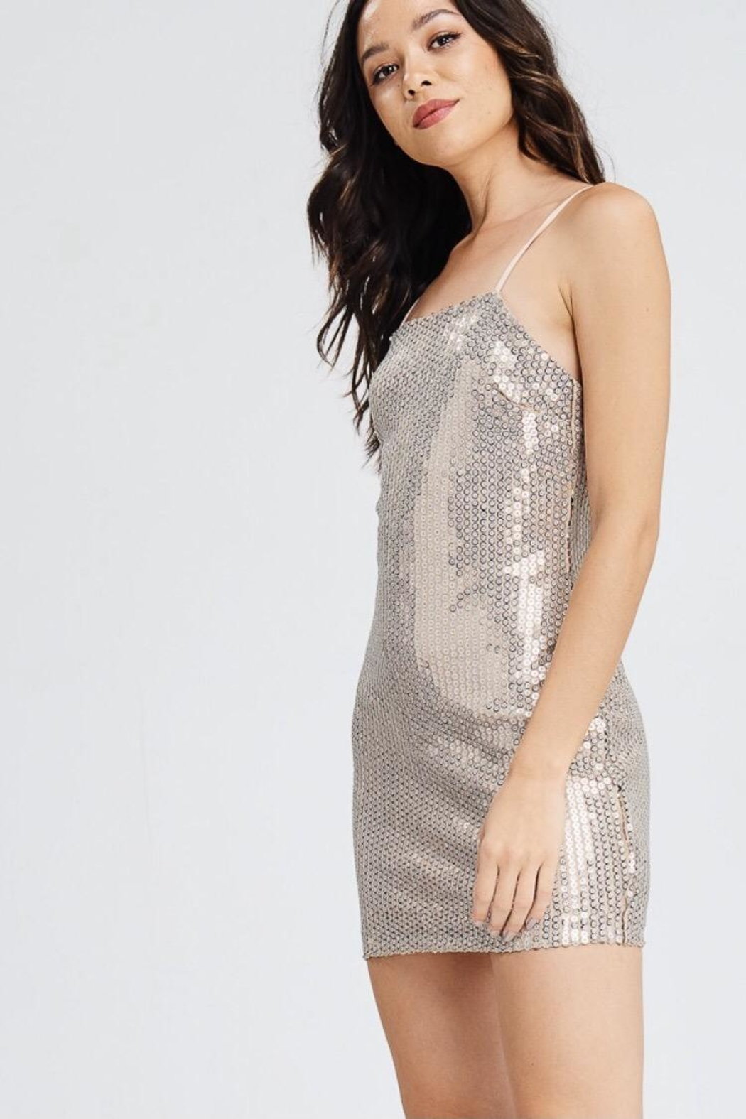 Emory Park Nude Sequin Dress - Side Cropped Image