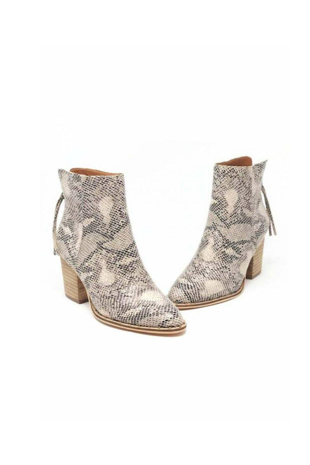 O Limit Fashion Snake Print Booties - Front Full Image