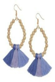 Occasionally Made Ombre Tassel Earrings - Product Mini Image