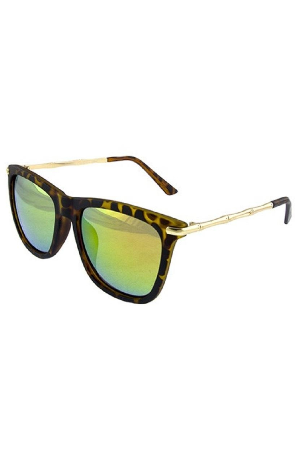 Ocean and Land Metal Bamboo Sunglasses - Front Cropped Image