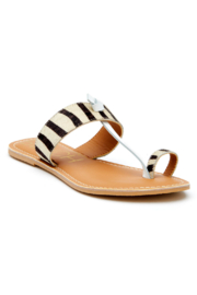 Matisse Offshore Zebra Thong Sandal - Front cropped