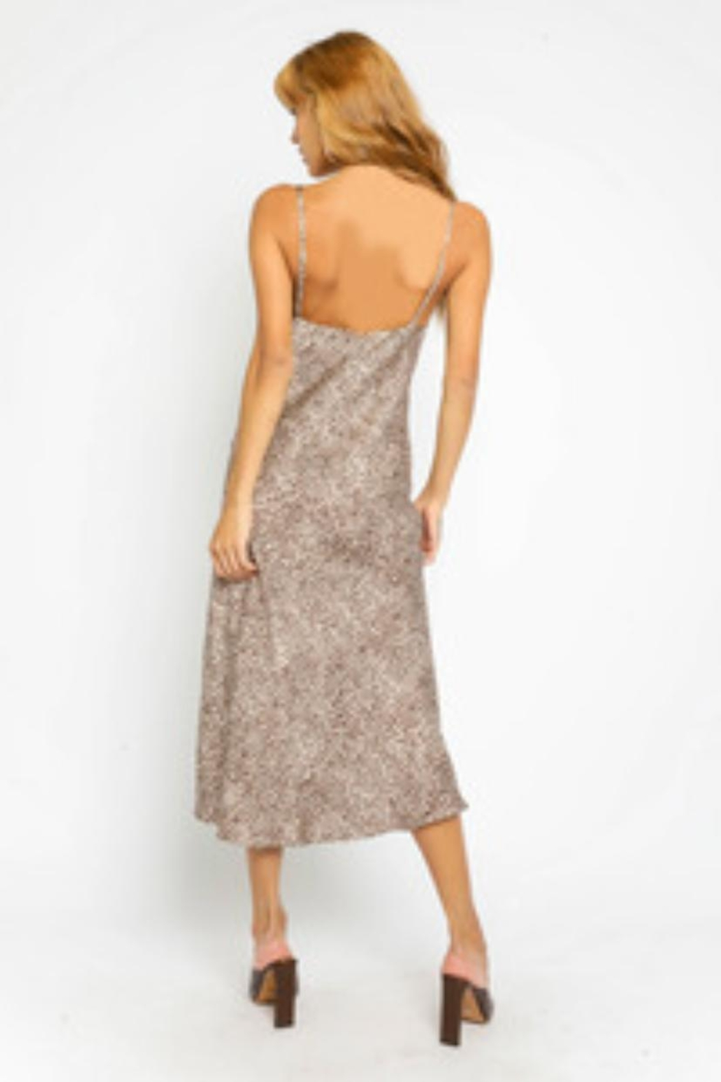 Olivaceous Animal Print Slip-Dress - Front Full Image