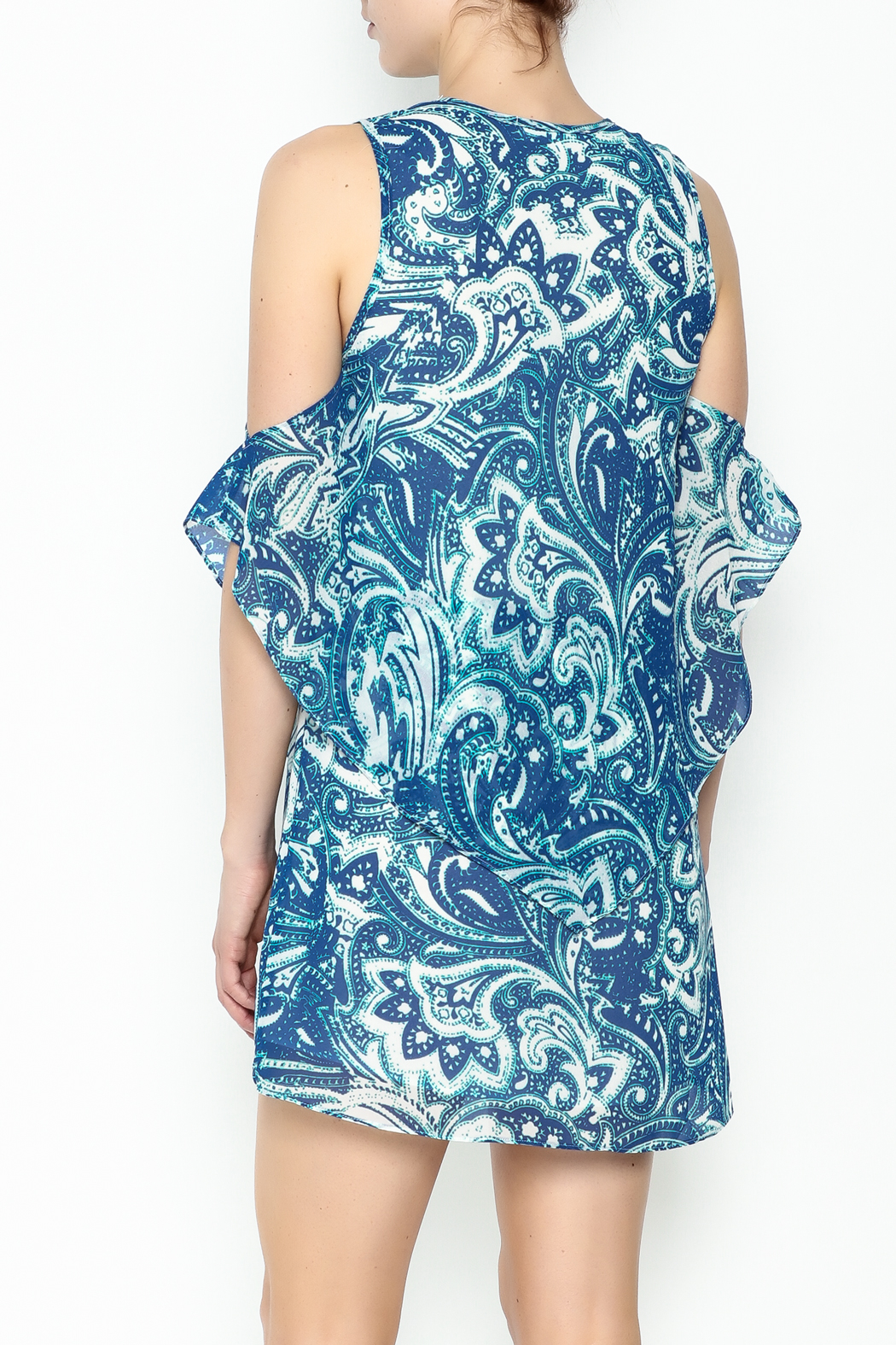 Olivaceous Blue Printed Dress - Back Cropped Image