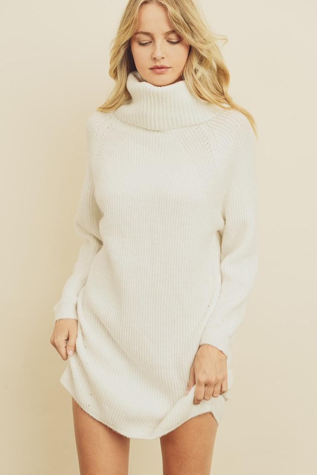 Olivaceous Chunky Sweater Dress - Main Image