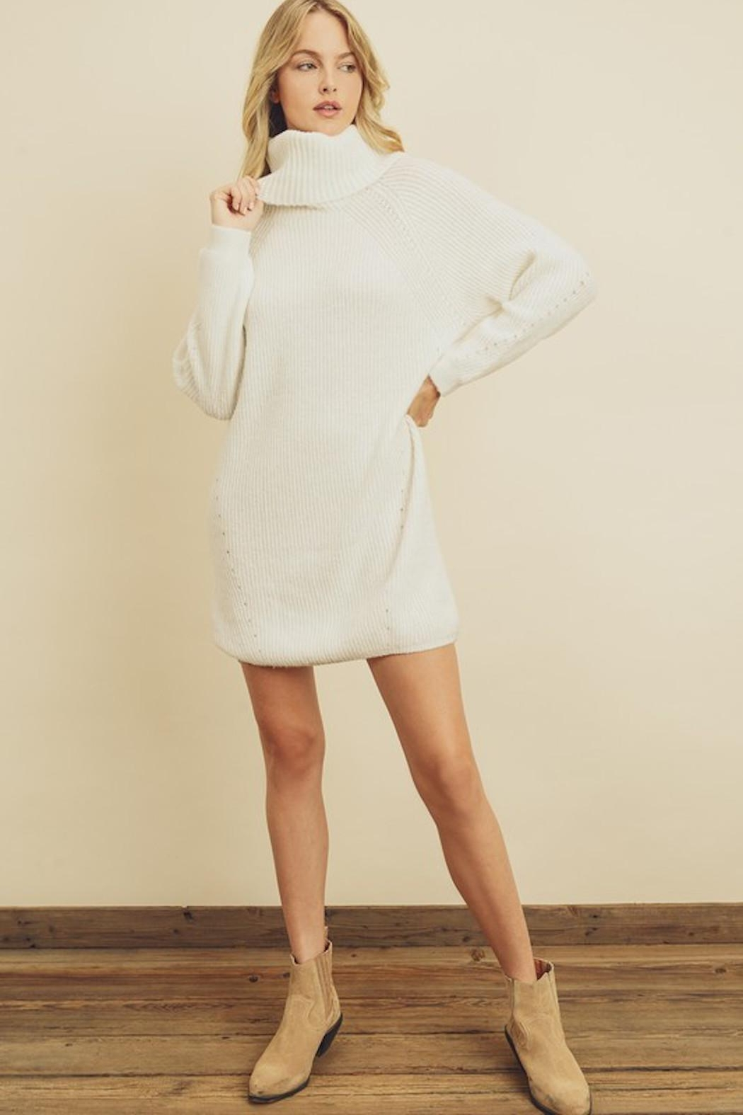 Olivaceous Chunky Sweater Dress - Back Cropped Image