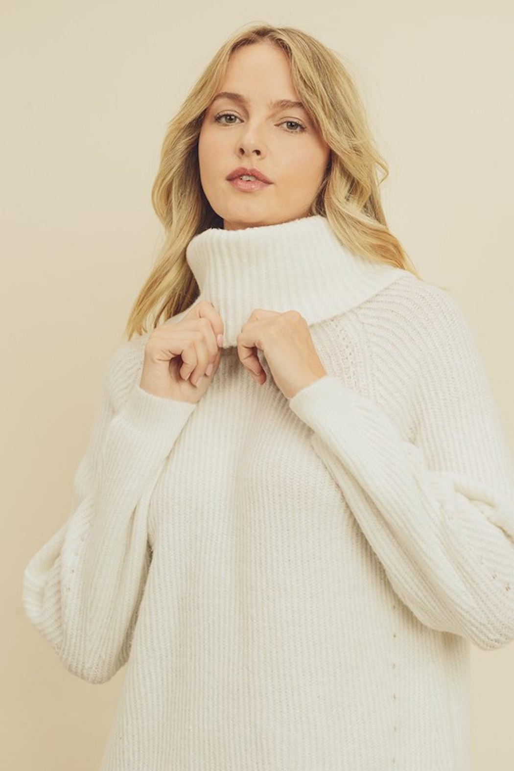 Olivaceous Chunky Sweater Dress - Front Full Image