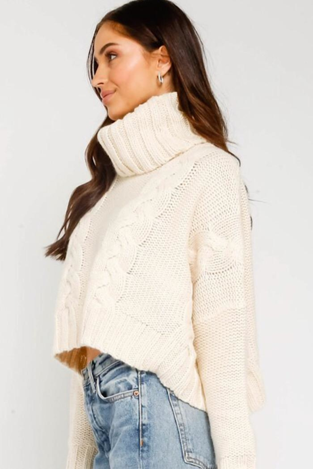 Olivaceous Cropped Turtleneck Sweater - Front Full Image