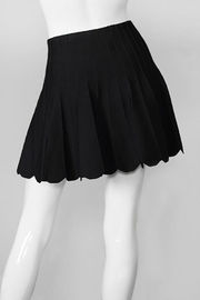 Olivaceous Flared Black Mini Skirt - Side cropped