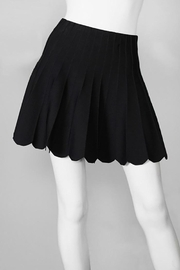 Olivaceous Flared Black Mini Skirt - Product Mini Image