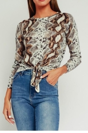 Olivaceous Python Print Sweater - Product Mini Image