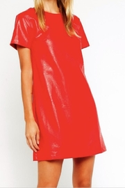 Olivaceous Red Minidress - Product Mini Image