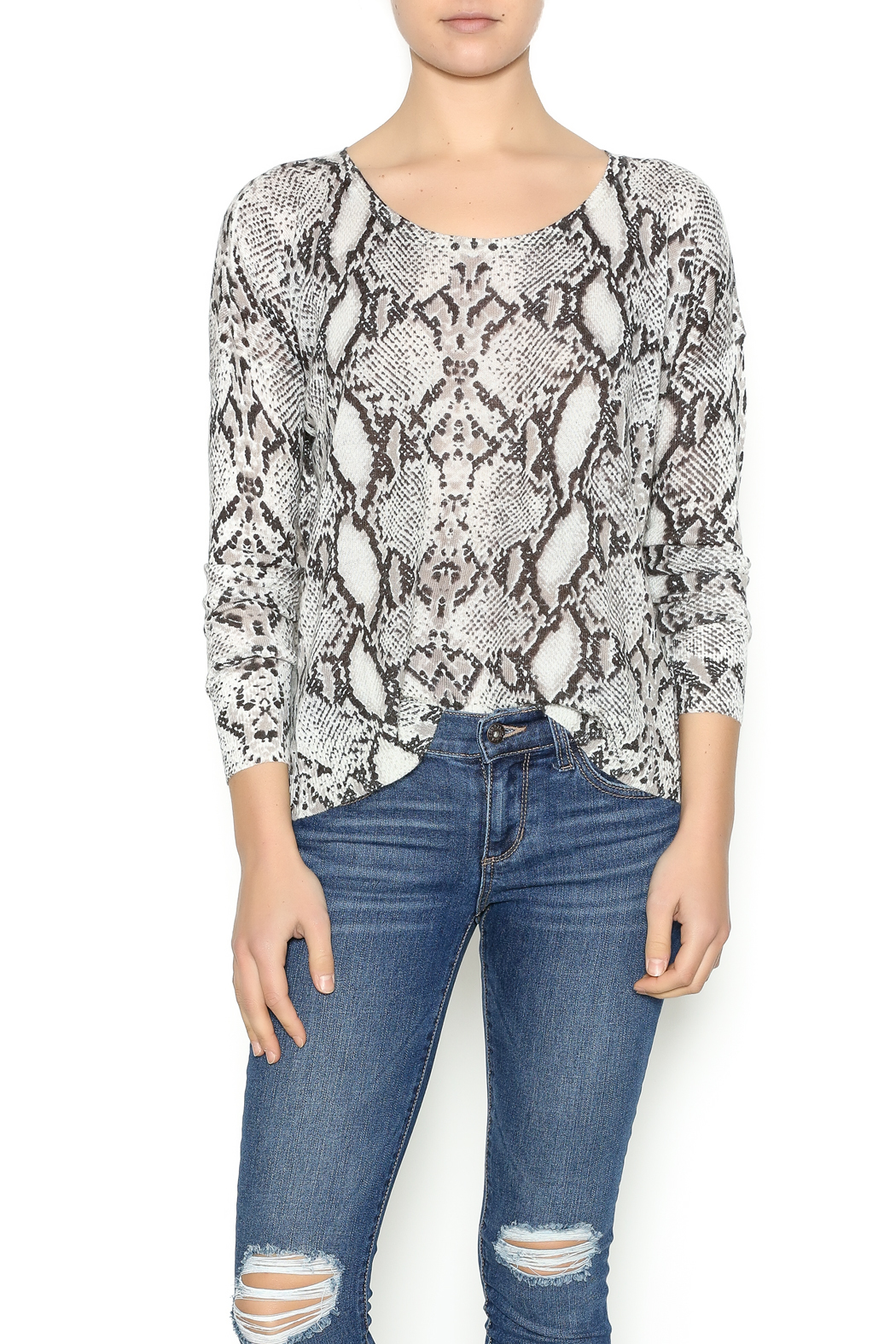 Olivaceous Snake Print Sweater - Front Cropped Image