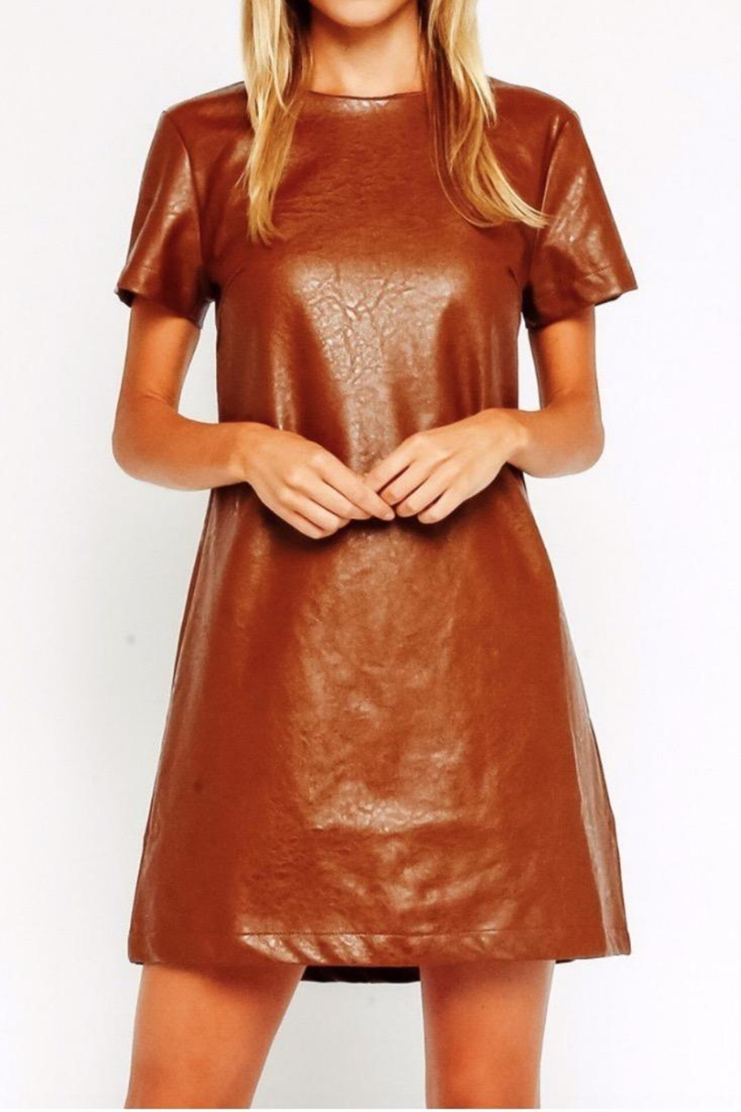 Olivaceous Tan Vegan Minidress - Front Cropped Image